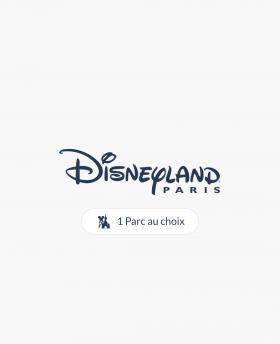 Disney Billet Flex 1 jour 1...