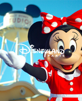 Disney Billet Flex 1 jour 1 parc