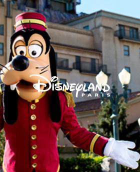 Disney Billet Flex 1 jour 2 parcs
