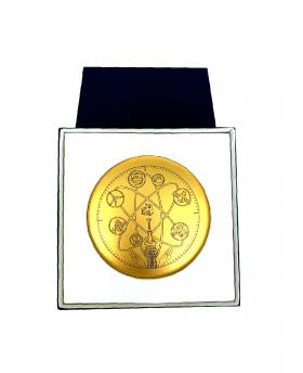 Médaille ECE 100 ans...